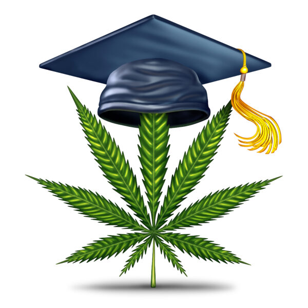 It is Time for Your Cannabis Education!